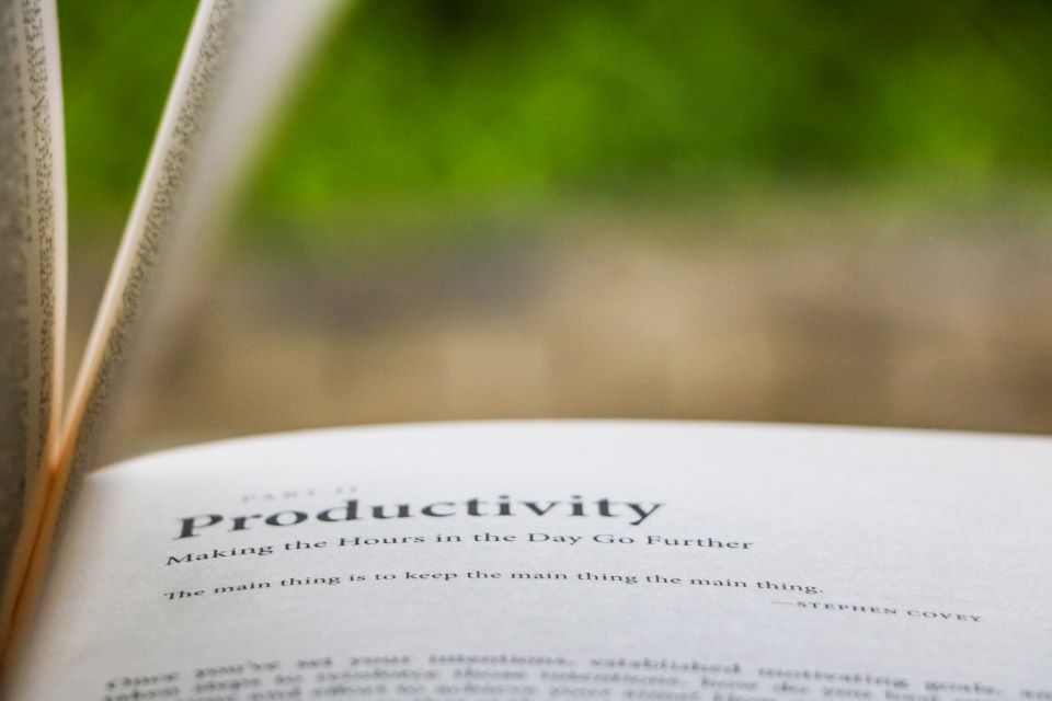 Resilient Productivity